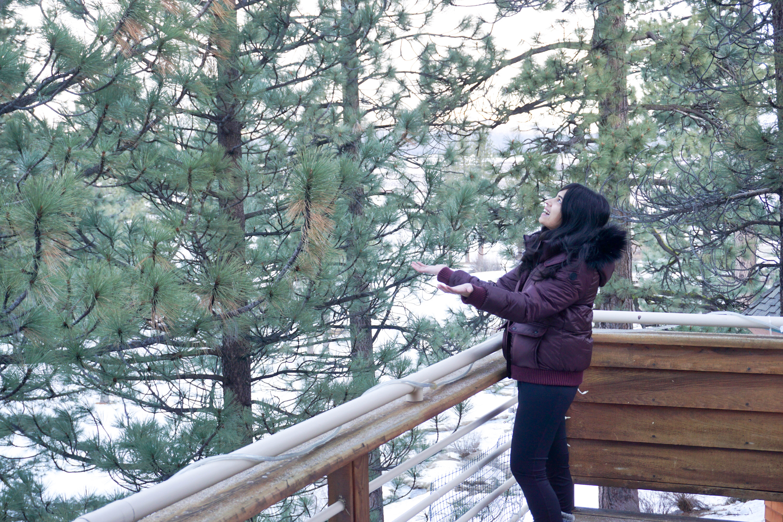 LakeTahoe_snowgirl