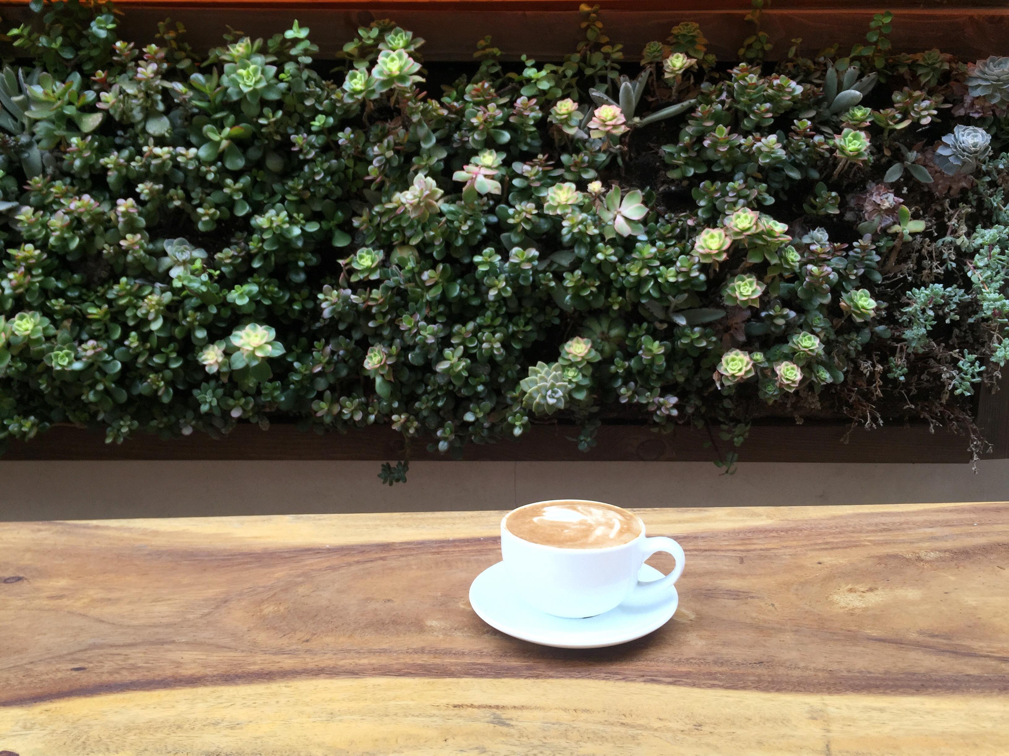 Elixir_Coffee_La_Jolla