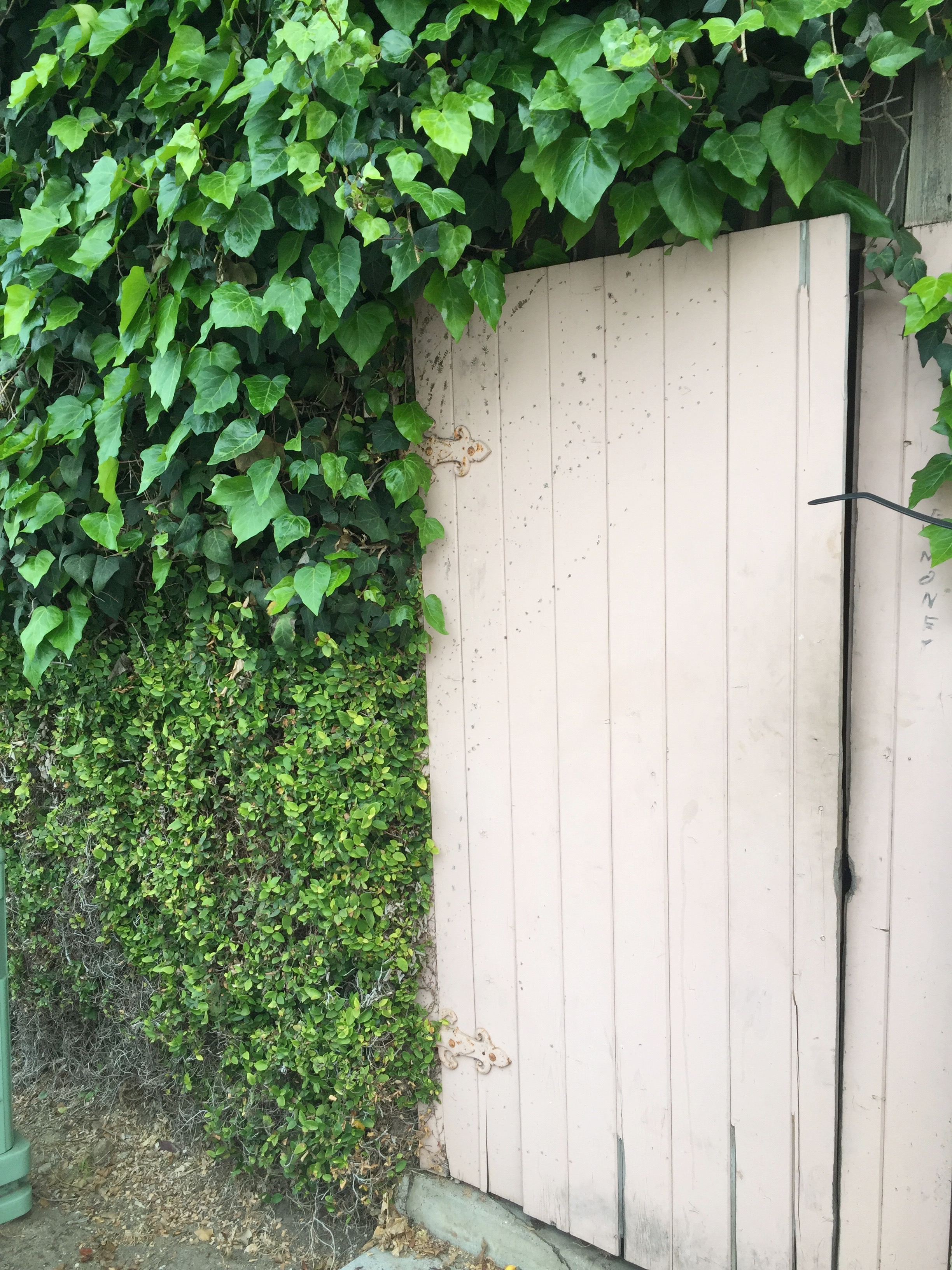 La_Jolla_door