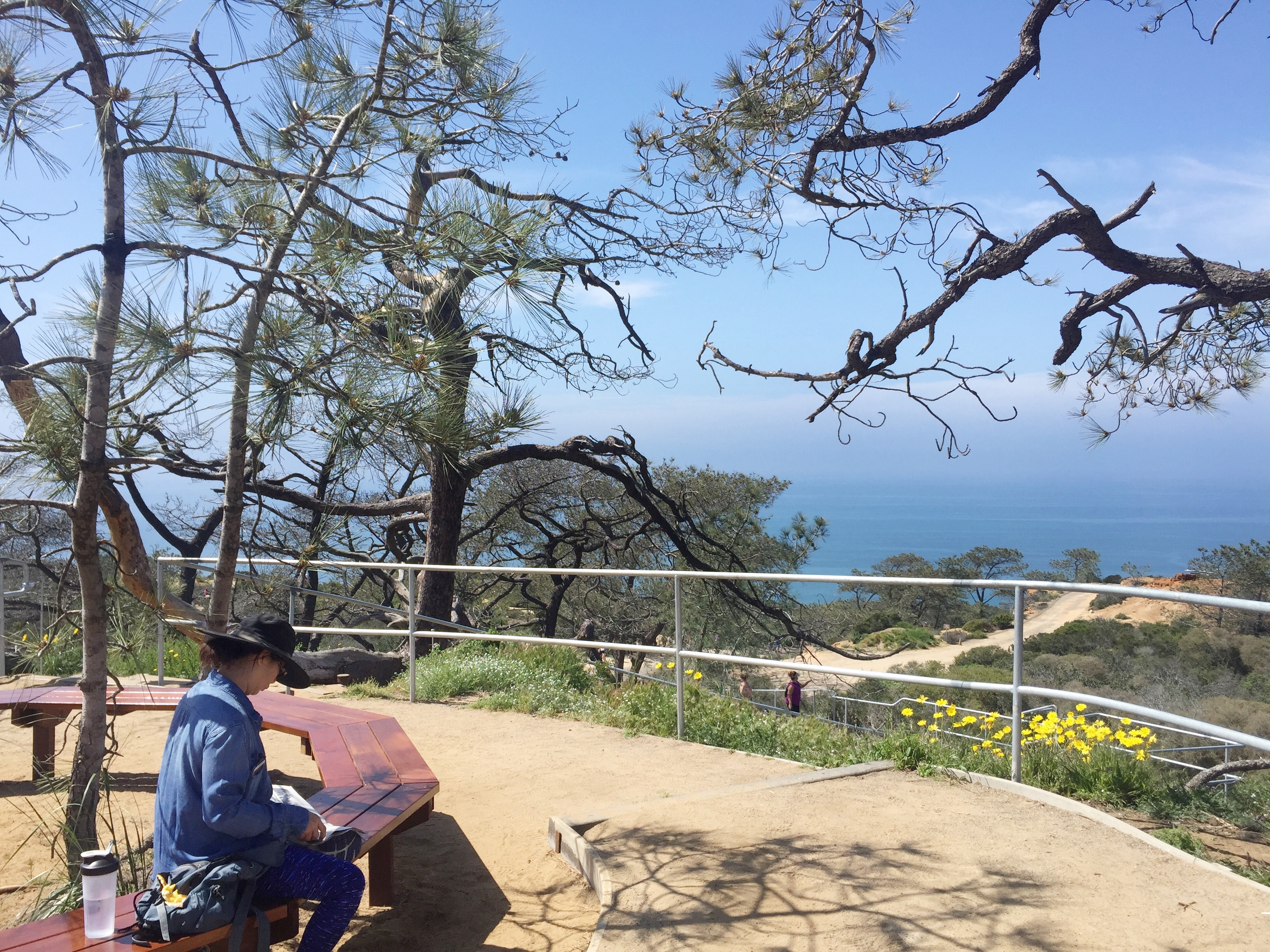 TorreyPines_hike_viewpoint