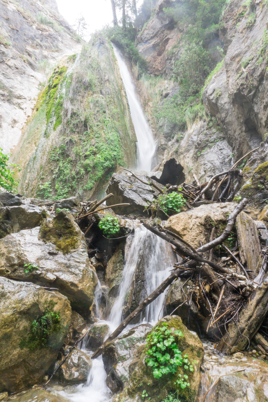 Limekiln State Park hike to Limekiln Falls