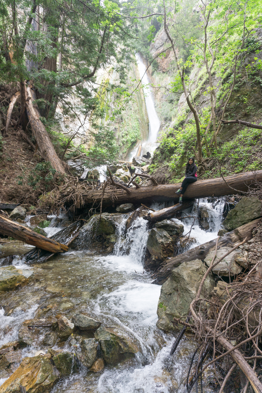 Limekiln State Park Limekiln Falls