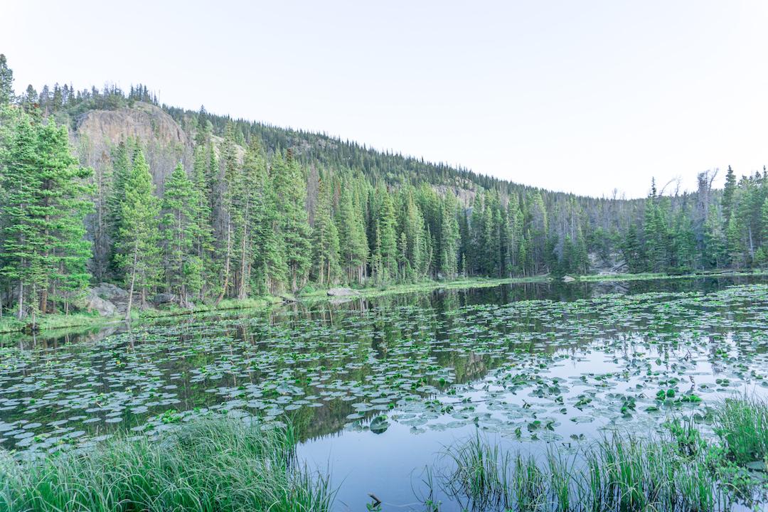 Her_Travel_Edit_Nymph_Lake_Morning