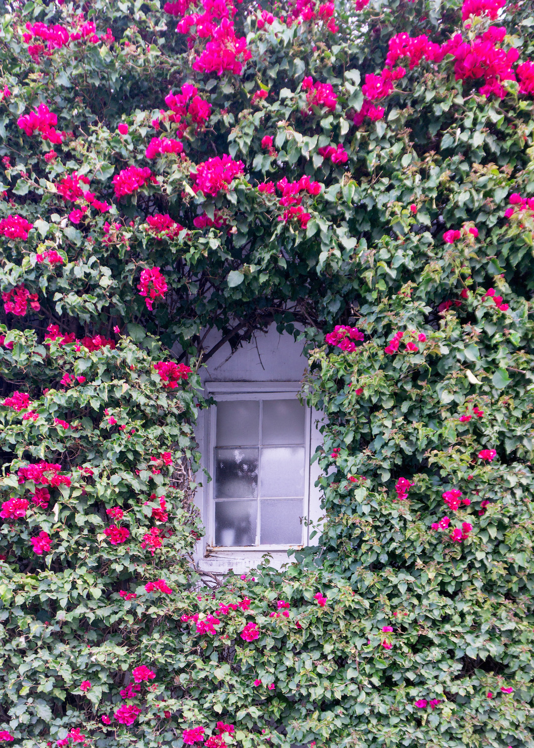 Her_Travel_Edit_Carmel_Window