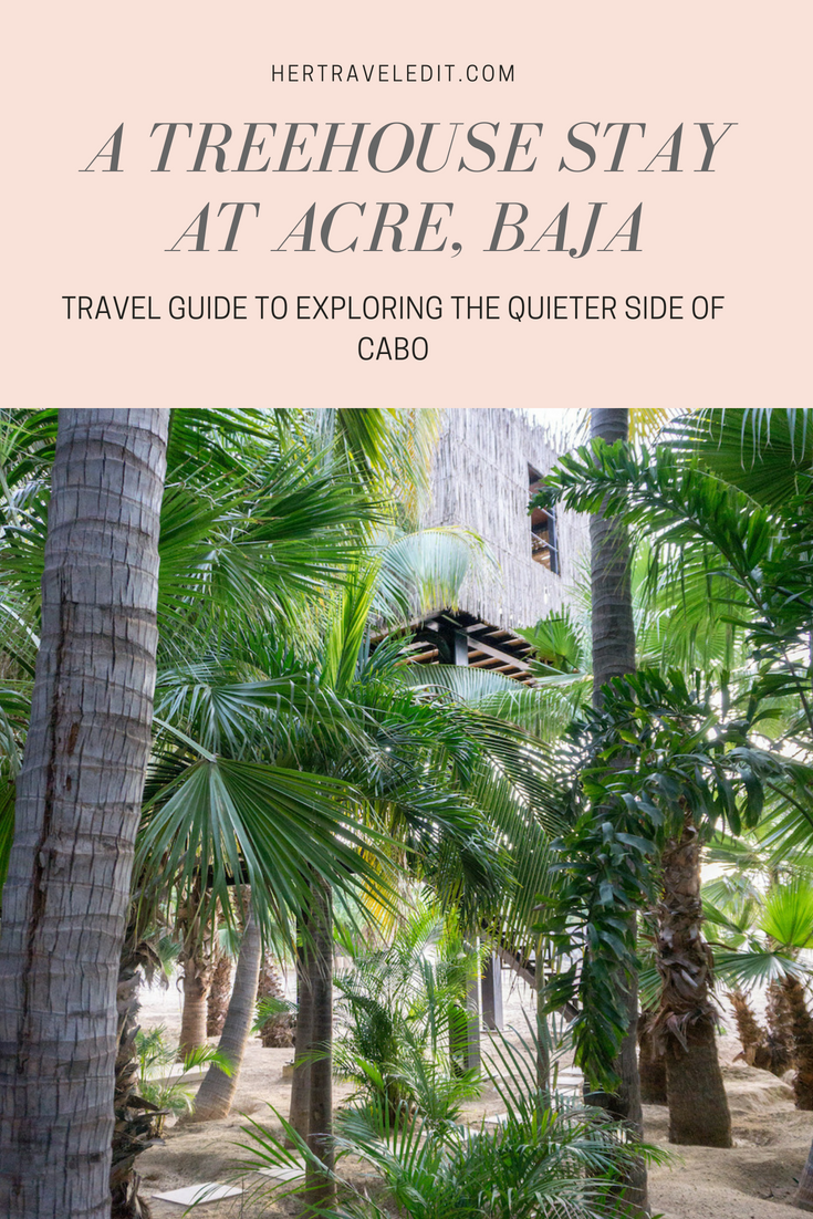A Magical Treehouse Stay at Acre Baja in Cabo