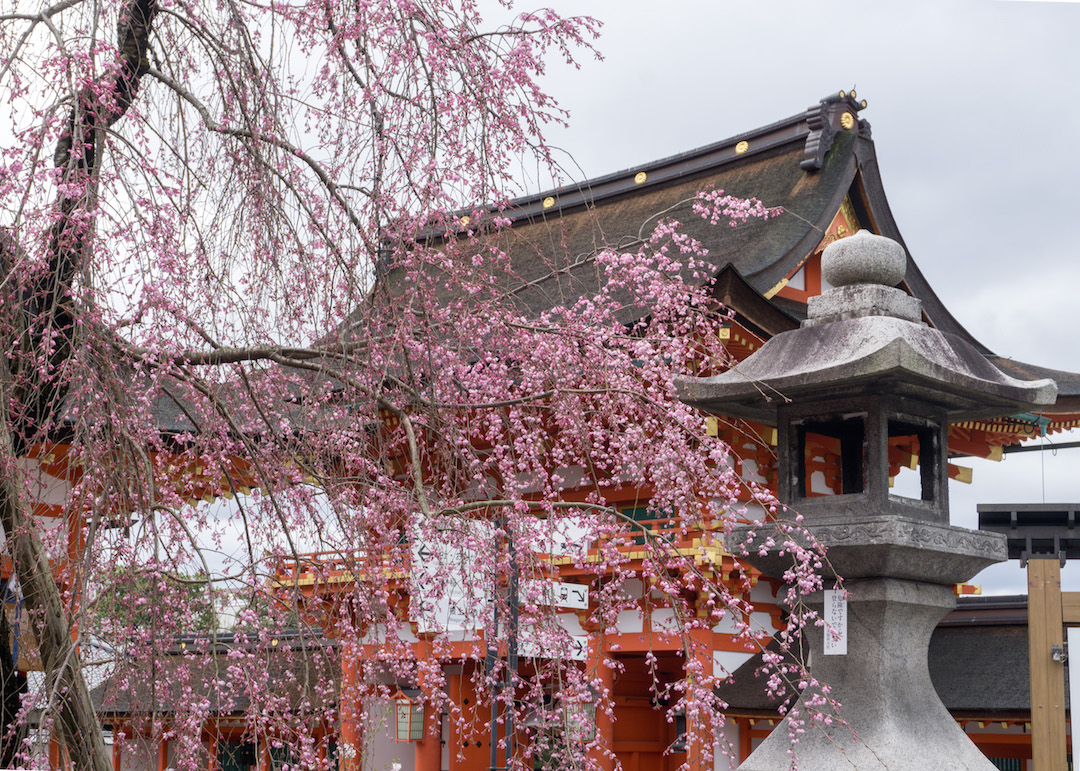 Temples of Kyoto in the Spring
