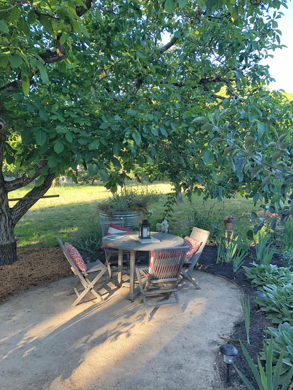 Little House Garden Sebastopol