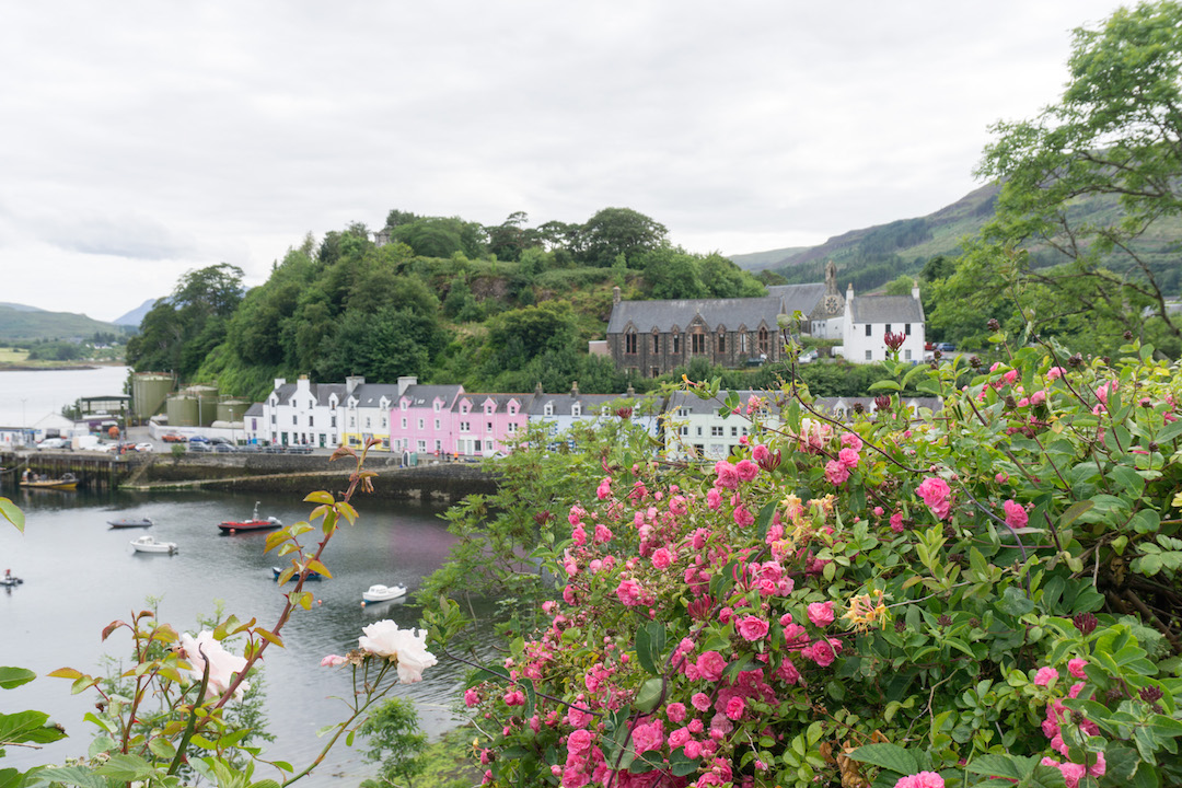 Colorful Houses of Portree behind the roses