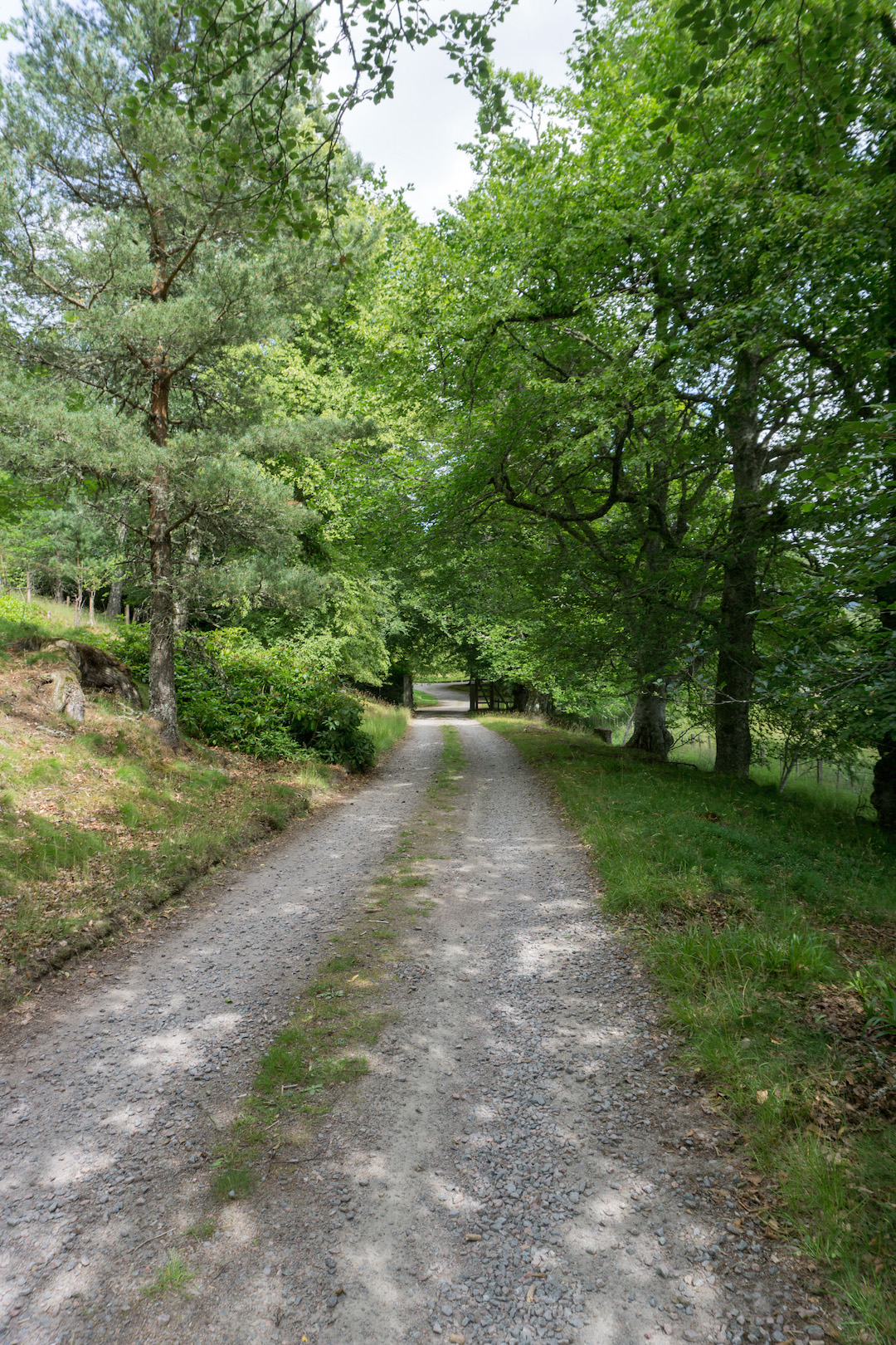 Road to Tomatin House