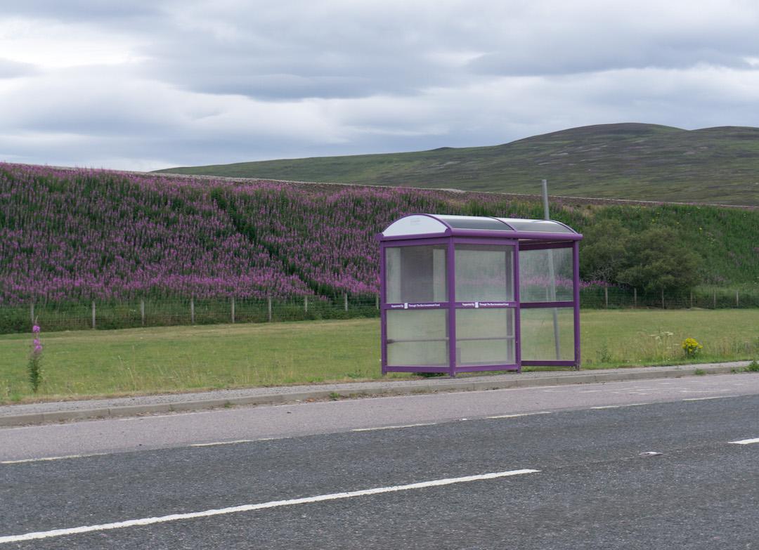 Scottish Highlands Bus Stop