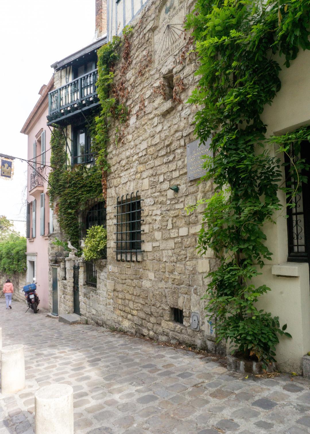 Montmarte Ivy Walls