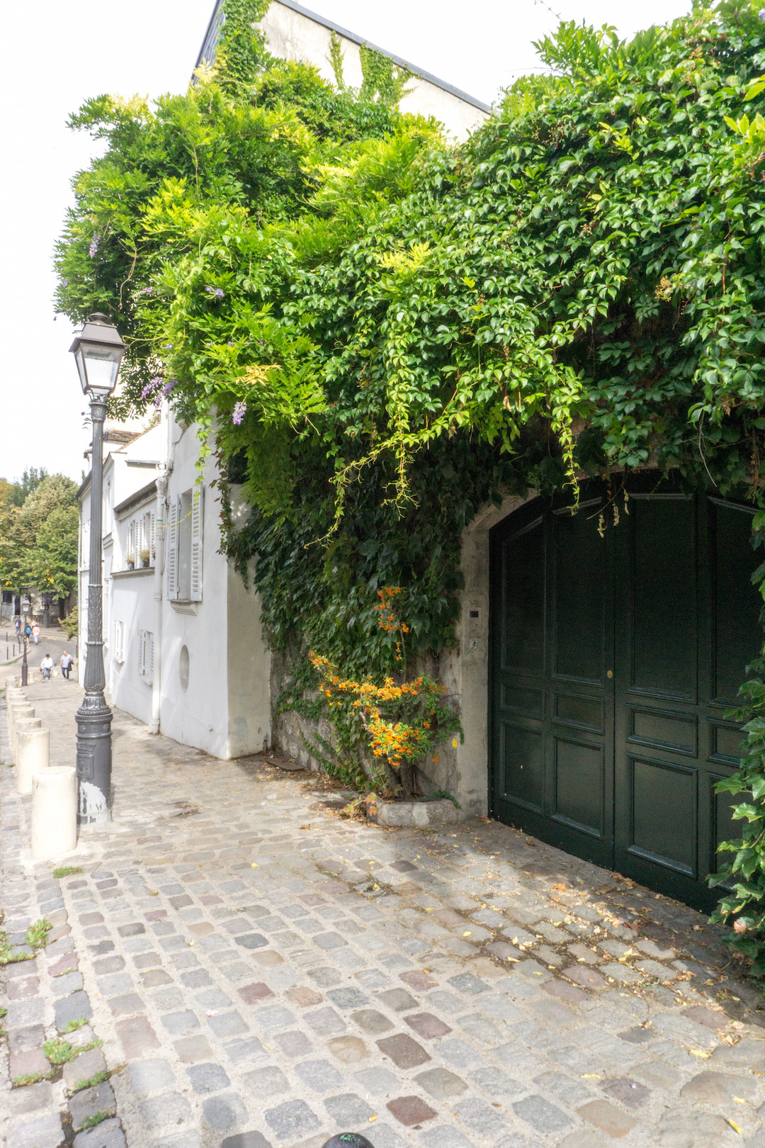 Paris Montemarte Ivy Door
