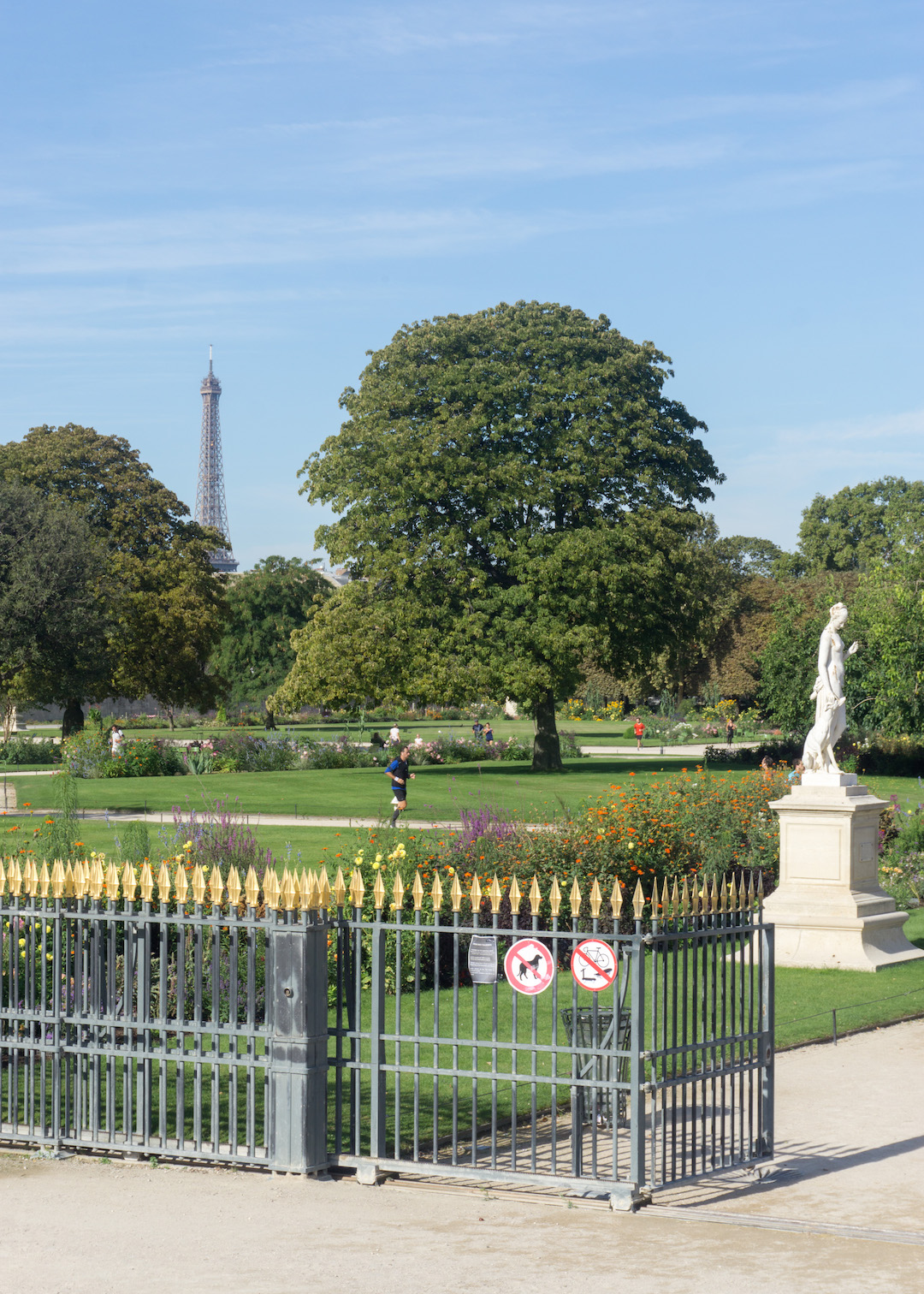View from Jardin Tuileries