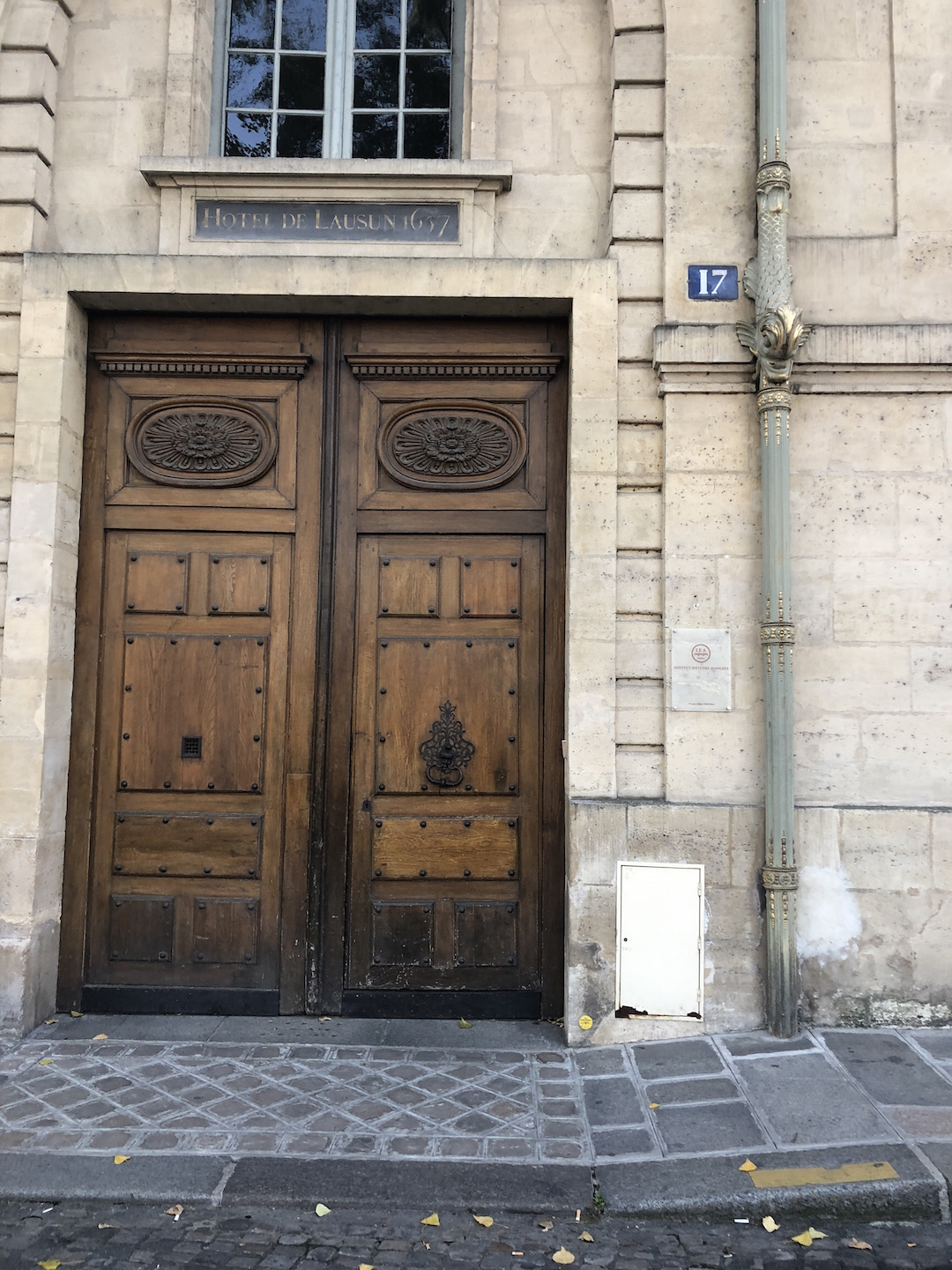 Paris Wooden Door