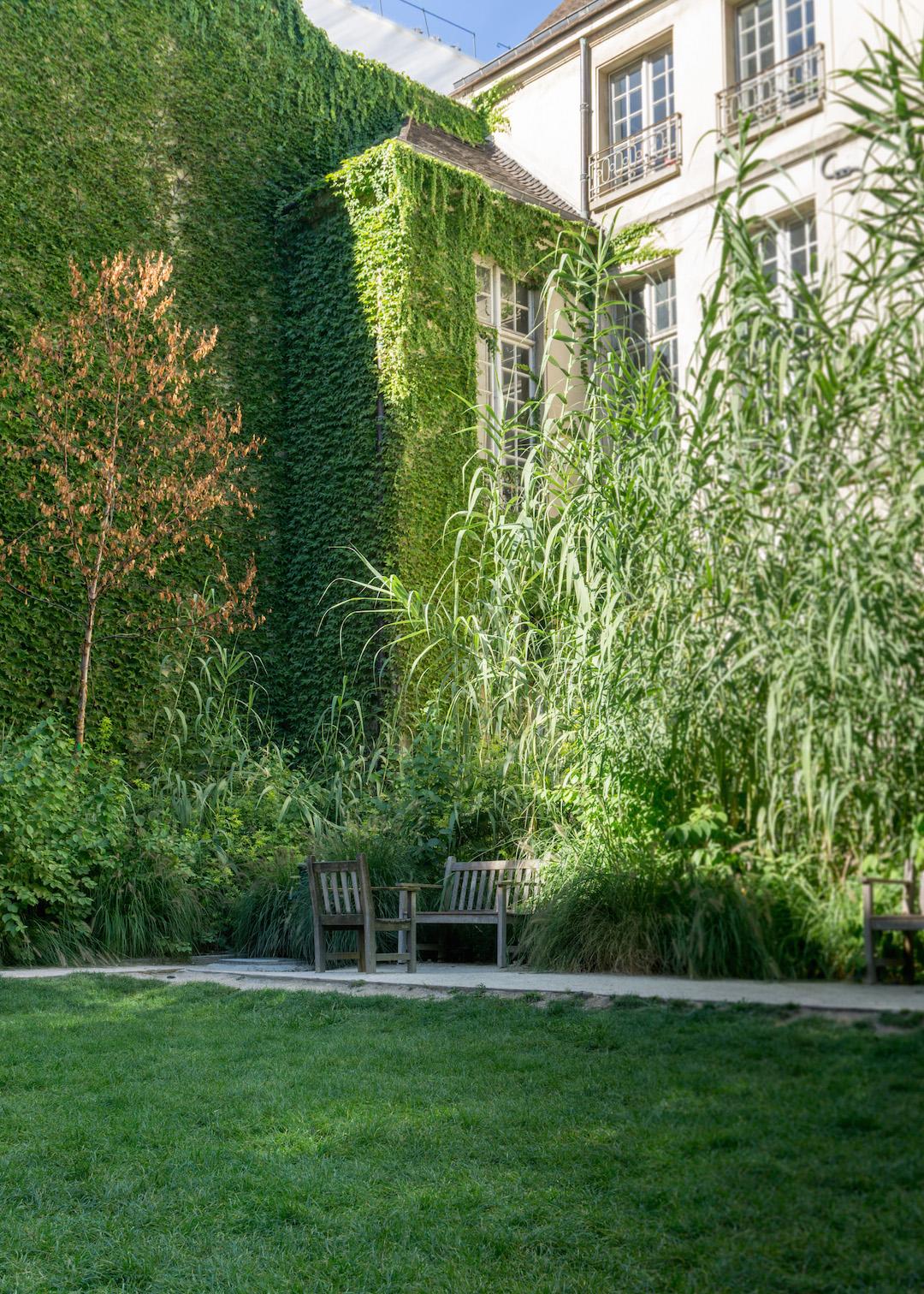 Garden on Rue des Rosiers