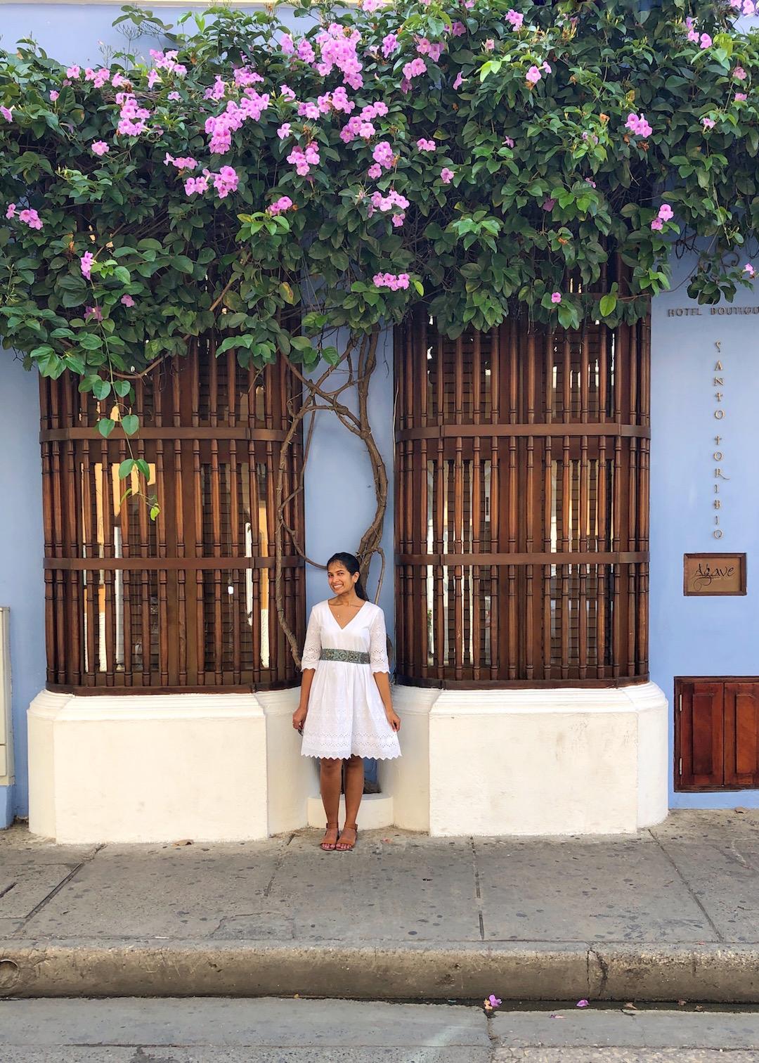 Pretty Windows in Cartagena