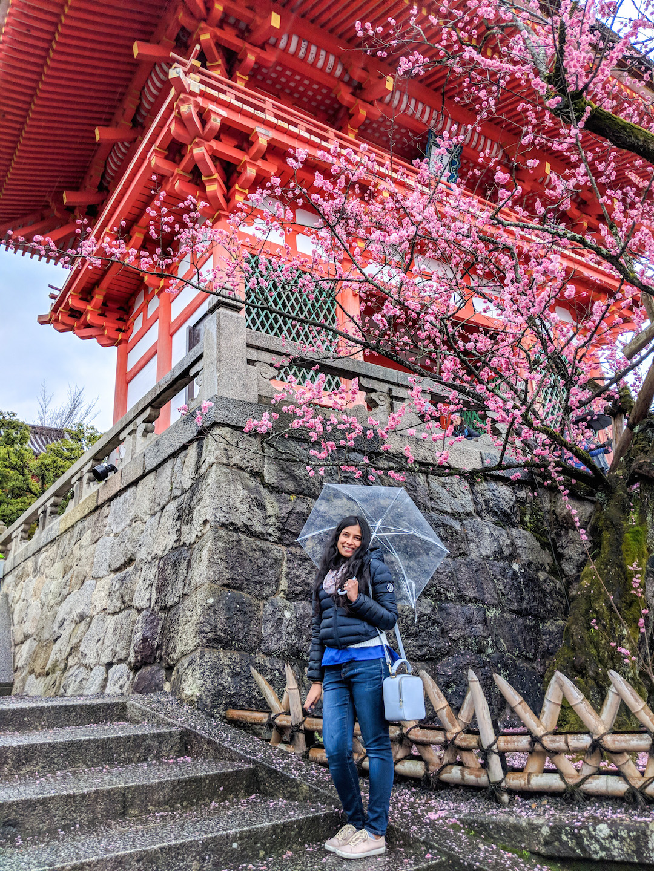 Kiyomizudera Temple Kyoto in Spring