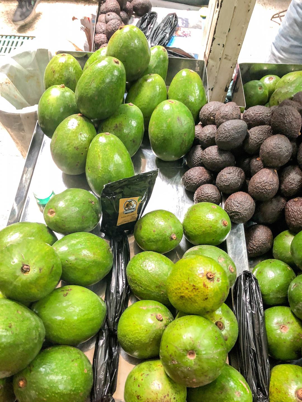 Giant avocados in Medellin